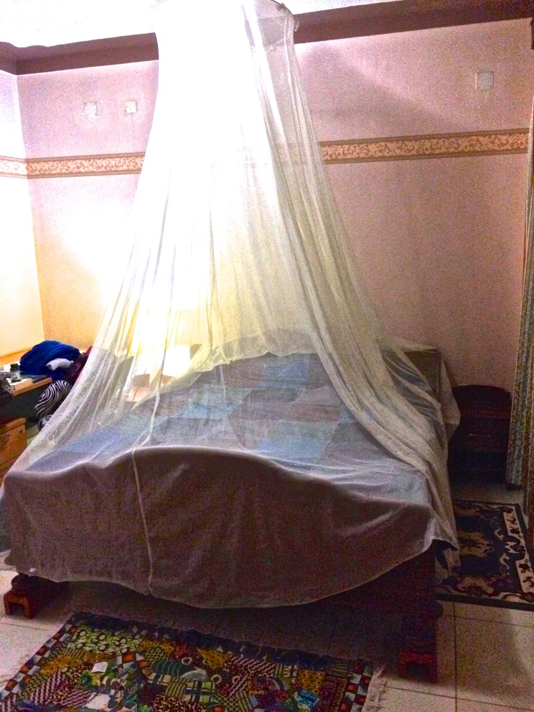 mosquito netting over my bed